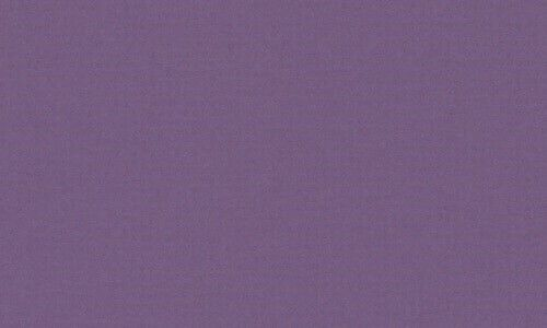 81076 - LAS CRUCES PURPLE